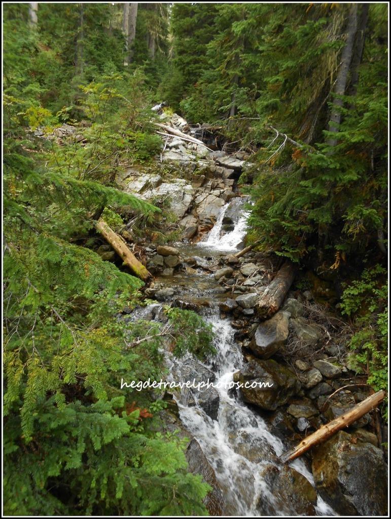 Rainy Lake Trail, North Cascades National Park