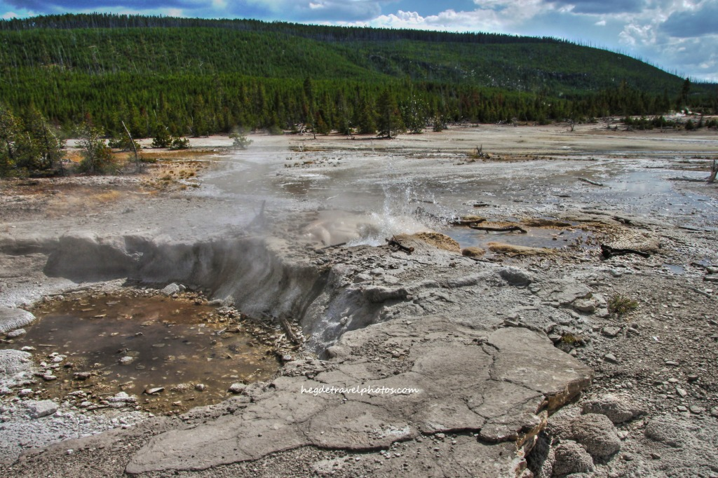 Veteran Geyser, Back Basin Trail, Norris Geyser Basin - Yellowstone National Park