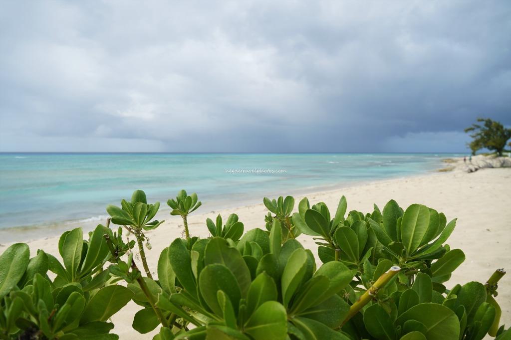 Pillory beach