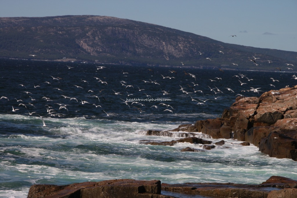Schoodic Point, Acadia National Park, Maine