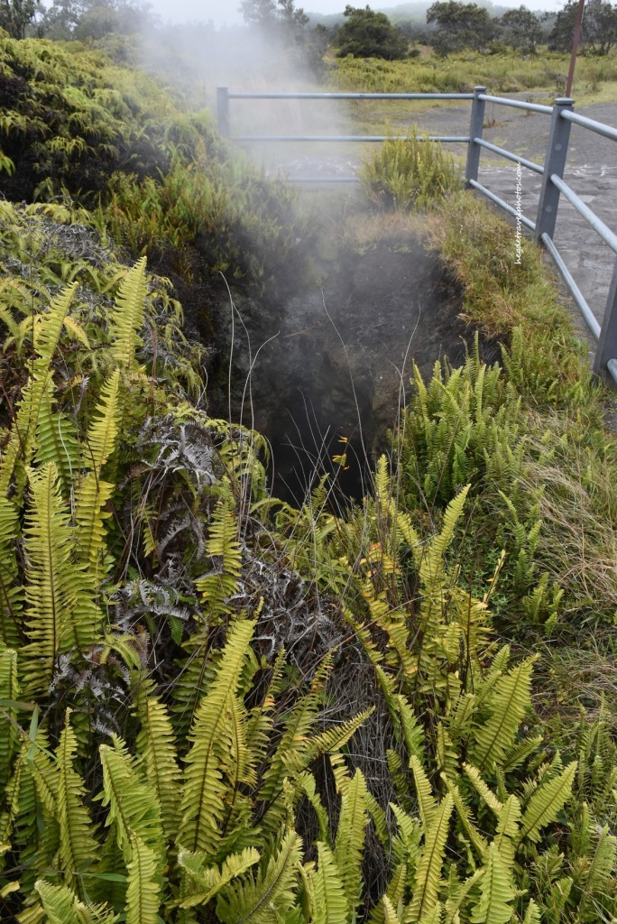 Steam Vents, Hawaiʻi Volcanoes National Park