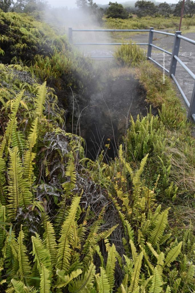Steam Vents, Hawaiʻi Volcanoes National Park