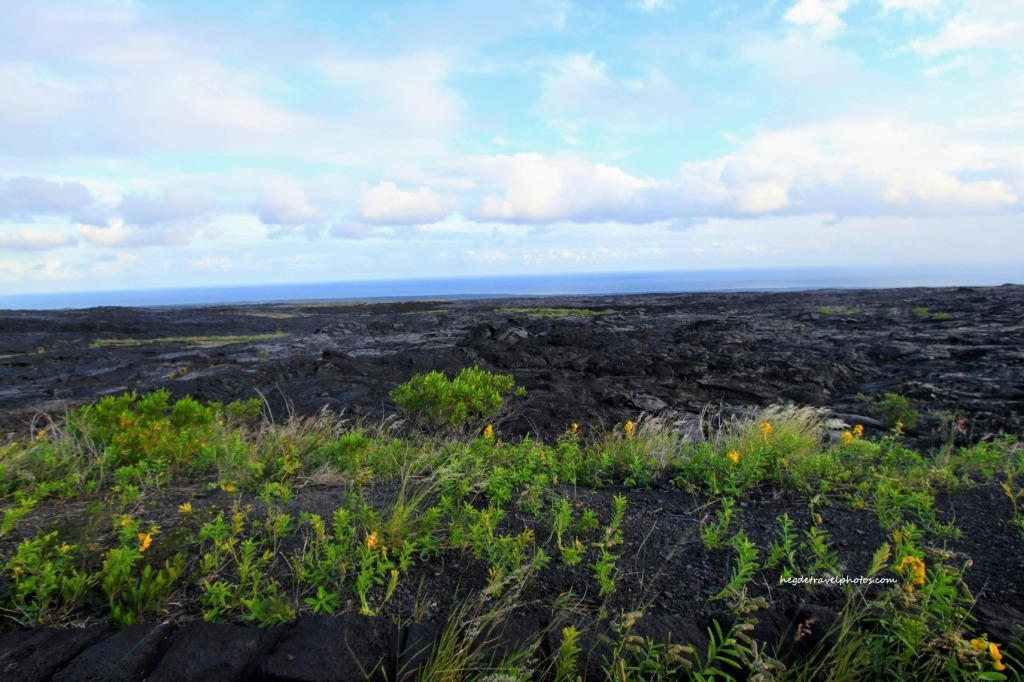 Chain of Craters Road, Hawaiʻi Volcanoes National Park
