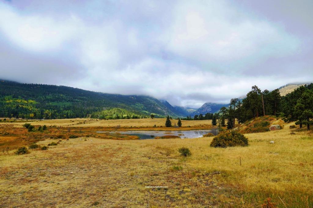 Sheep lakes, Fall River Road, Rocky Mountain National Park, Colorado