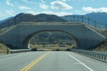 Wildlife overpass along Colorado State Highway 9