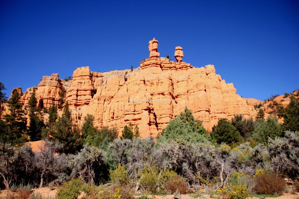 Red Canyon of Dixie National Forest in Utah