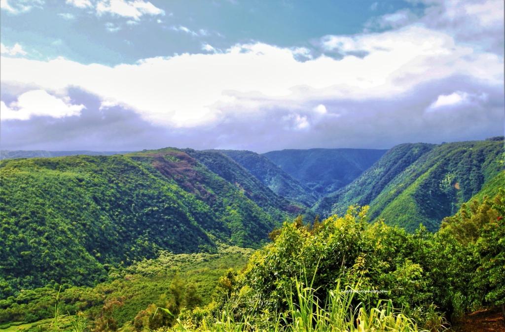 Pololu Valley Lookout, Big Island, Hawaii