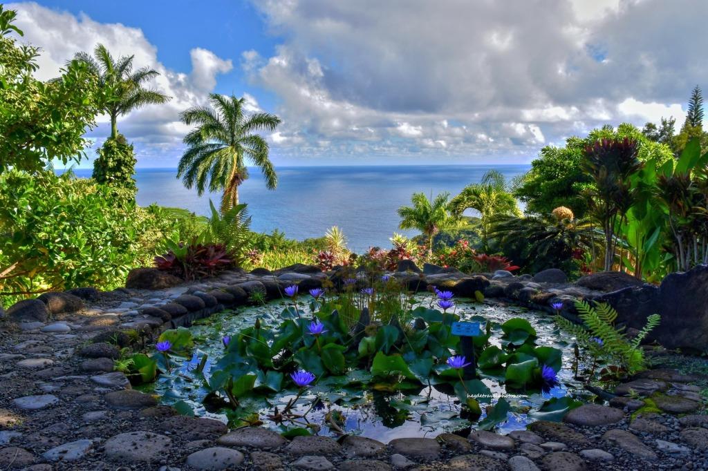 Garden of Eden Arboretum, Hana Highway, Maui, Hawaii