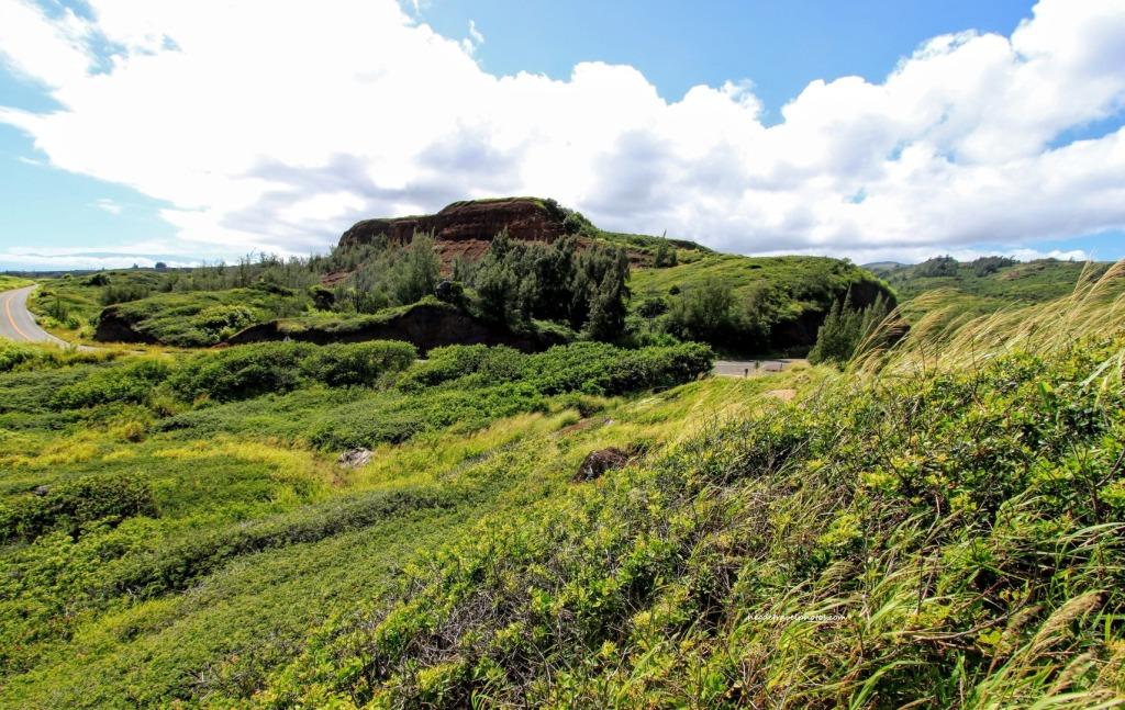 Ohai Trail, East Maui, Kahekili Highway, Hawaii